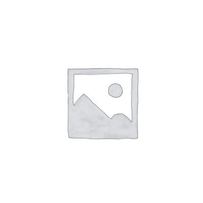 RaionBook UL3
